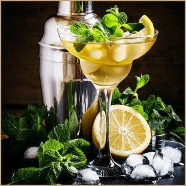 Lemon Vodka Liqueur