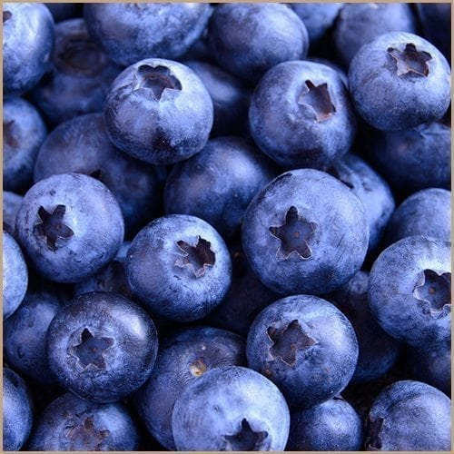 blueberry balsam vinegar