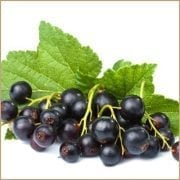 Blackcurrant Balsam Vinegar
