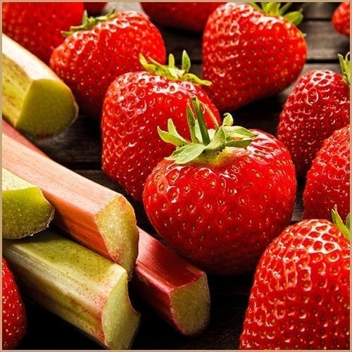 strawberry & rhubarb fruit pulp vinegar